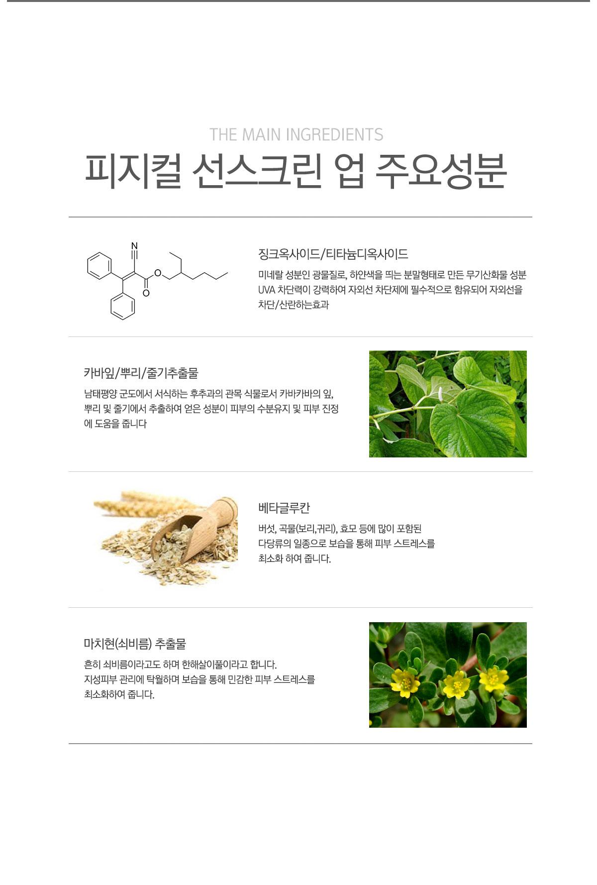 닥터에스리 피지컬 선스크린 60g(SPF50 PA+++) 무기자외선 차단제 - 닥터에스리, 44,000원, 선케어, 선크림